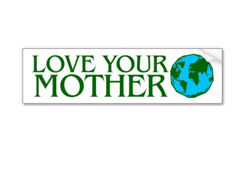 The big idea if this bumper sticker is to take care of the earth we talked about which mother the sticker referred to and listed ways to take care of the